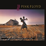 "Pink Floyd ""A Collection of Great Dance Songs"" 180 Gram Virgin Vinyl"